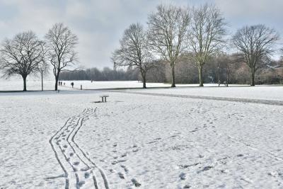 Snow Jan 2019